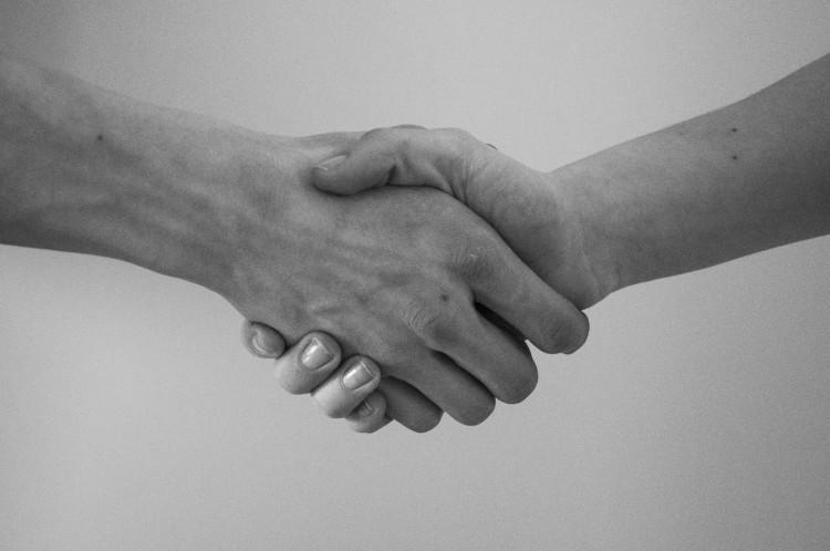 shareholders' agreement startups