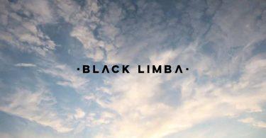 spanish lingerie startup black limba