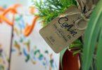 online flower delivery colvin